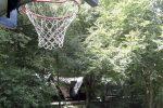 Basketballkorb auf dem Vorplatz